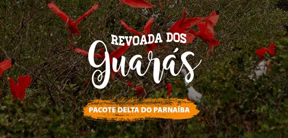 Revoada dos Guarás - Pacote Delta do Parnaíba